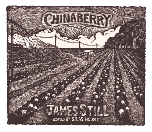 James Still chinaberry